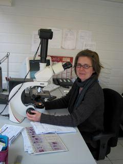 Mélanie FINE DMV DESV d'anatomie pathologique LAPVSO 129, route de Blagnac 31201 Toulouse cedex 2 m.fine@lapvso.fr www.lapvso.com